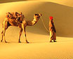 Golden city of Jaisalmer