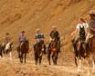 Horse Safari Tour in Rajasthan